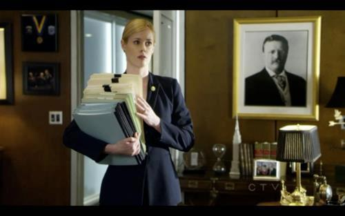 Abigail Hawk in Blue Bloods
