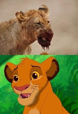 Simba og ein verulig leyva