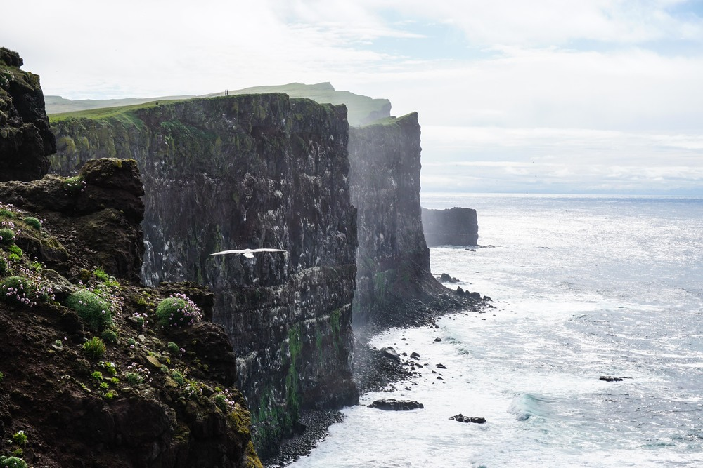 Iceland_Edit-00747.jpg