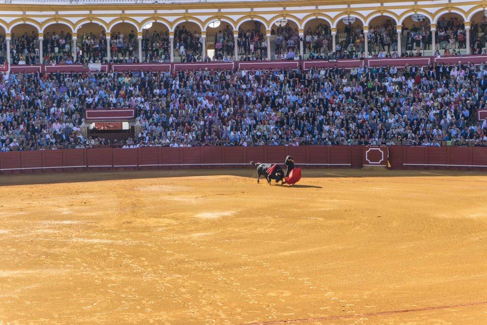 Spain-01290.jpg