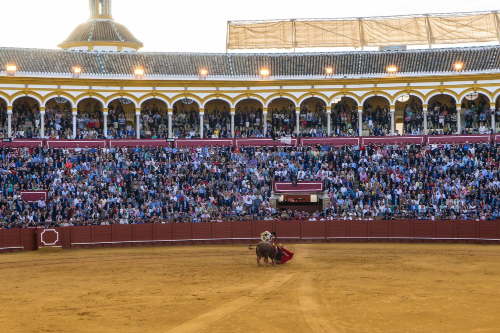 Spain-01300.jpg