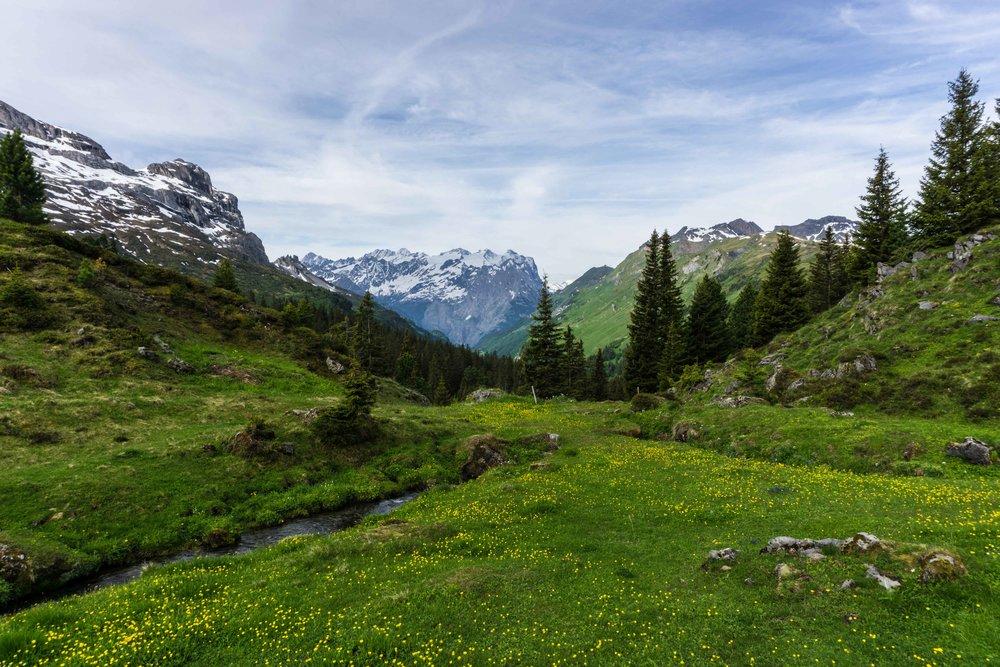 Switzerland-02553.jpg