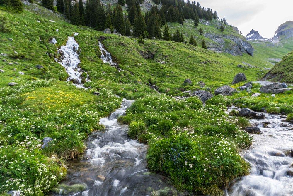 Switzerland-02560.jpg