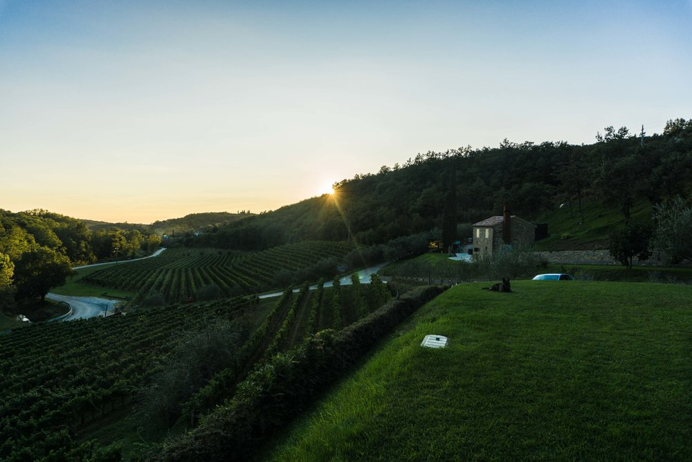 Istria-04224.jpg