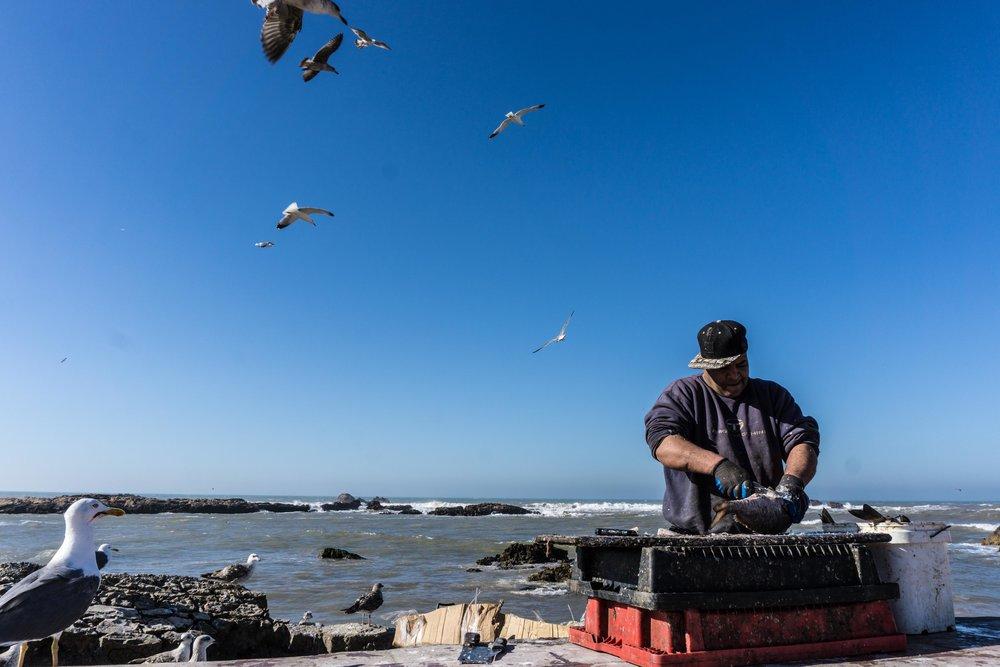 Morocco-05852.jpg