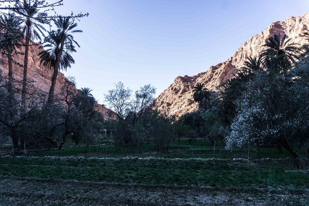 Morocco-06031.jpg