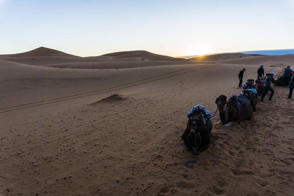 Morocco-06215.jpg