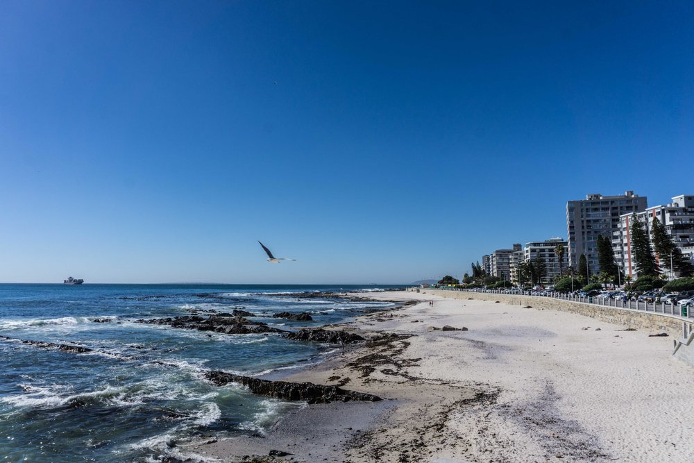 South-Africa-06961.jpg