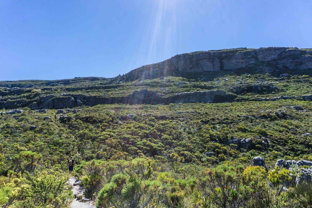 South-Africa-06993.jpg