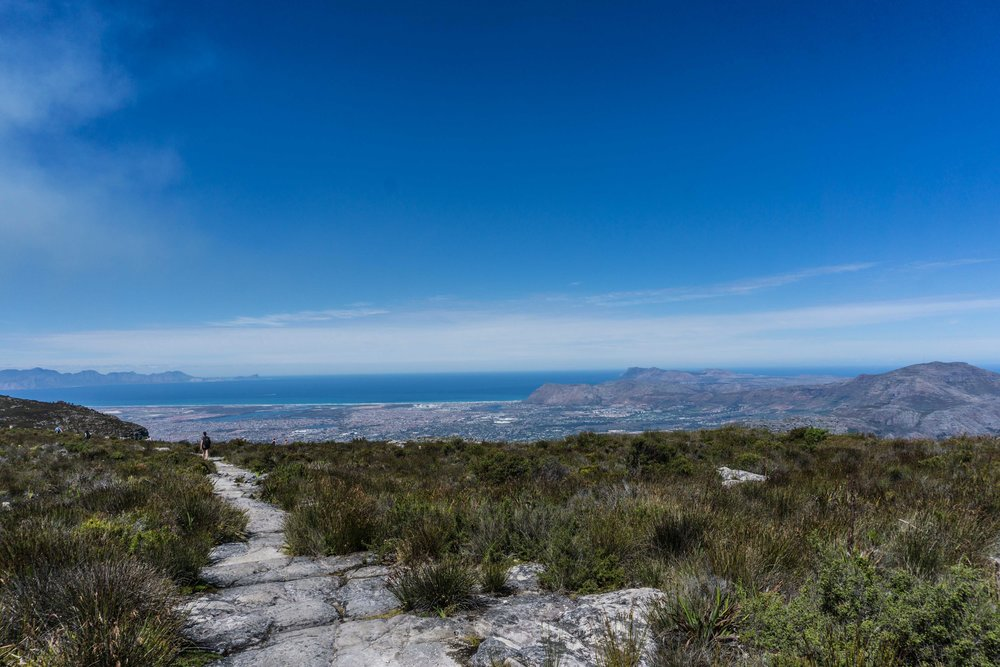 South-Africa-07005.jpg