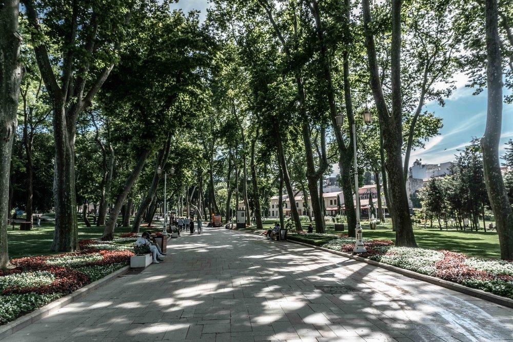 Turkey-08599.jpg