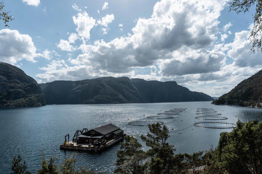 Norway-09491.jpg