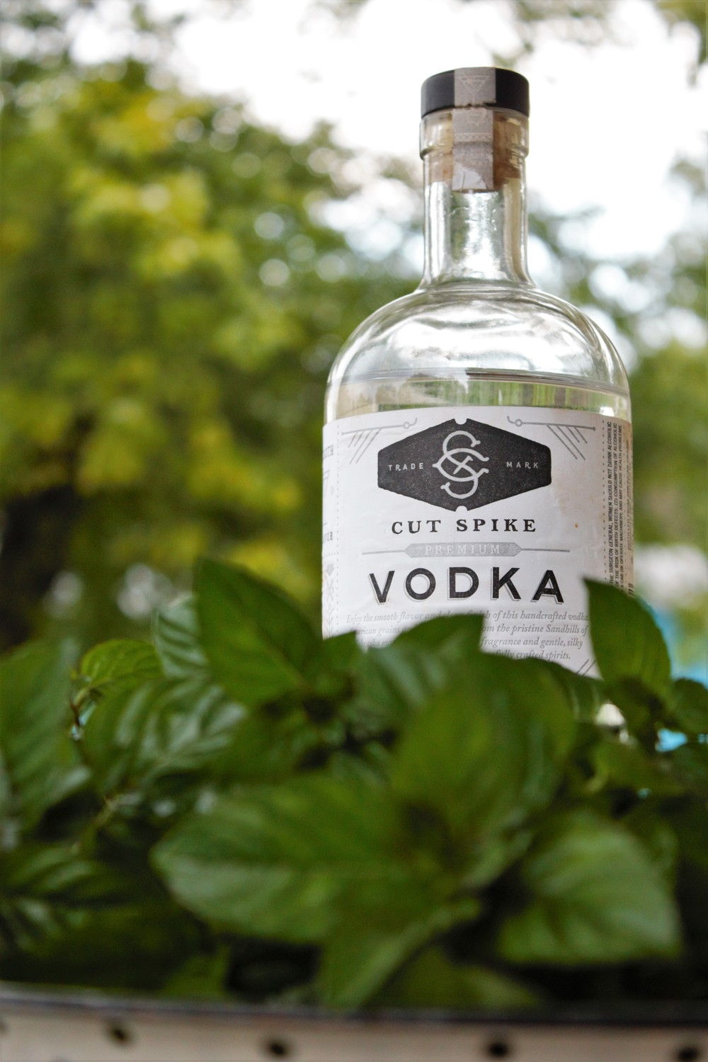 80 proof vodka from a local maker helps to extract the oils from the mint and preserve the extract from spoiling. We use Cut Spike Vodka, which is distilled in La Vista, Nebraska.