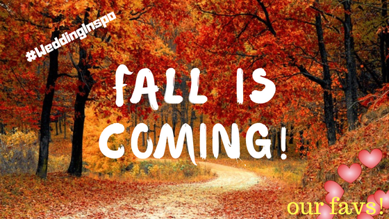 blog banner fall.png