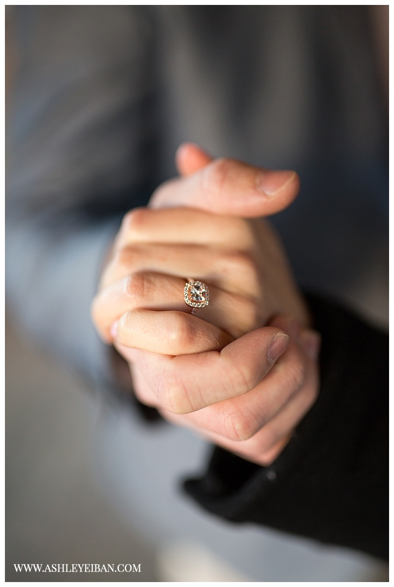 Lynchburg Virginia Proposal Photography || Lynchburg Virginia Wedding and Portrait Photographer || Ashley Eiban Photography || www.ashleyeiban.com