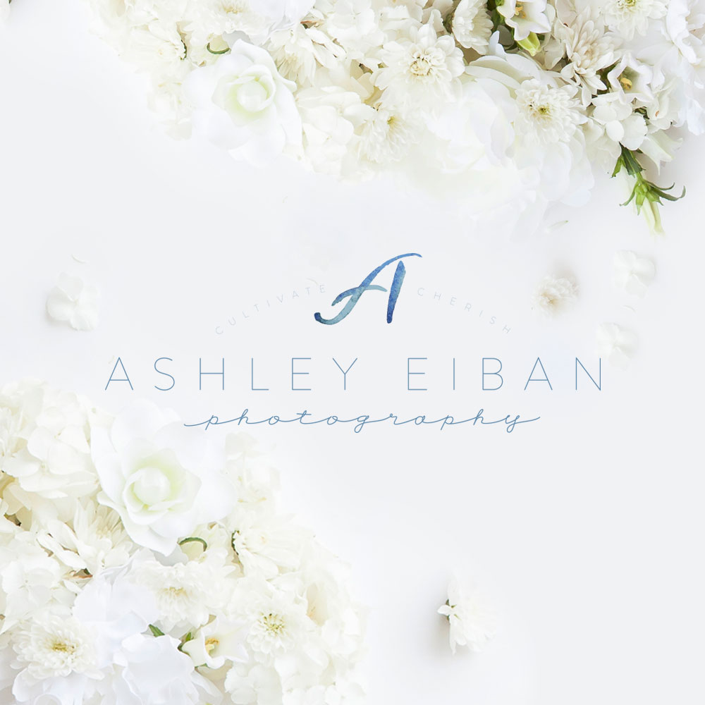 Lynchburg Virginia Wedding Photographer || Charlottesville Wedding Photographer || Ashley Eiban Photography || www.ashleyeiban.com