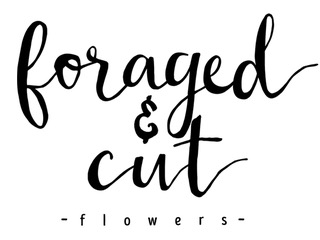 Foraged & Cut Flowers || Lynchburg Wedding Florist