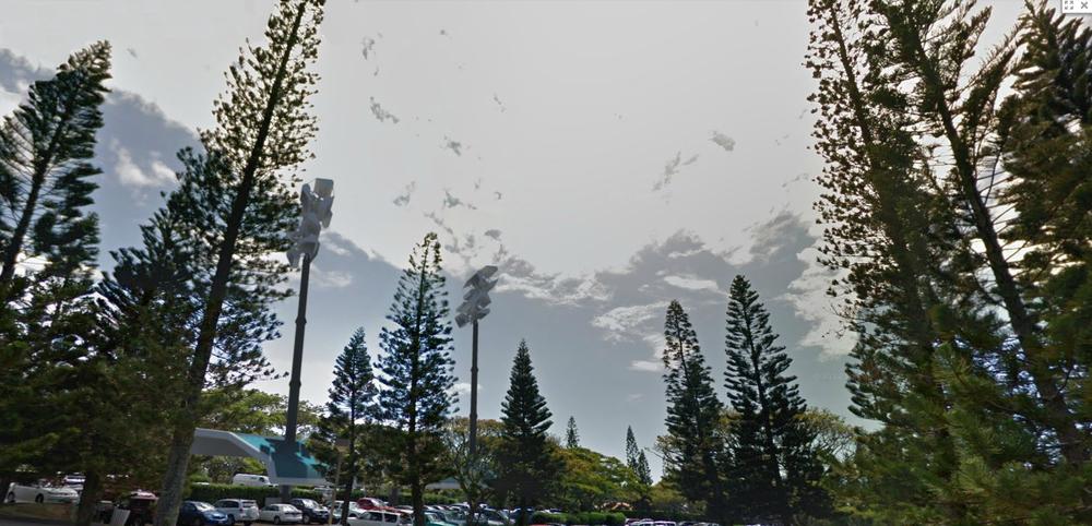 ritz_maui_parking2.jpg