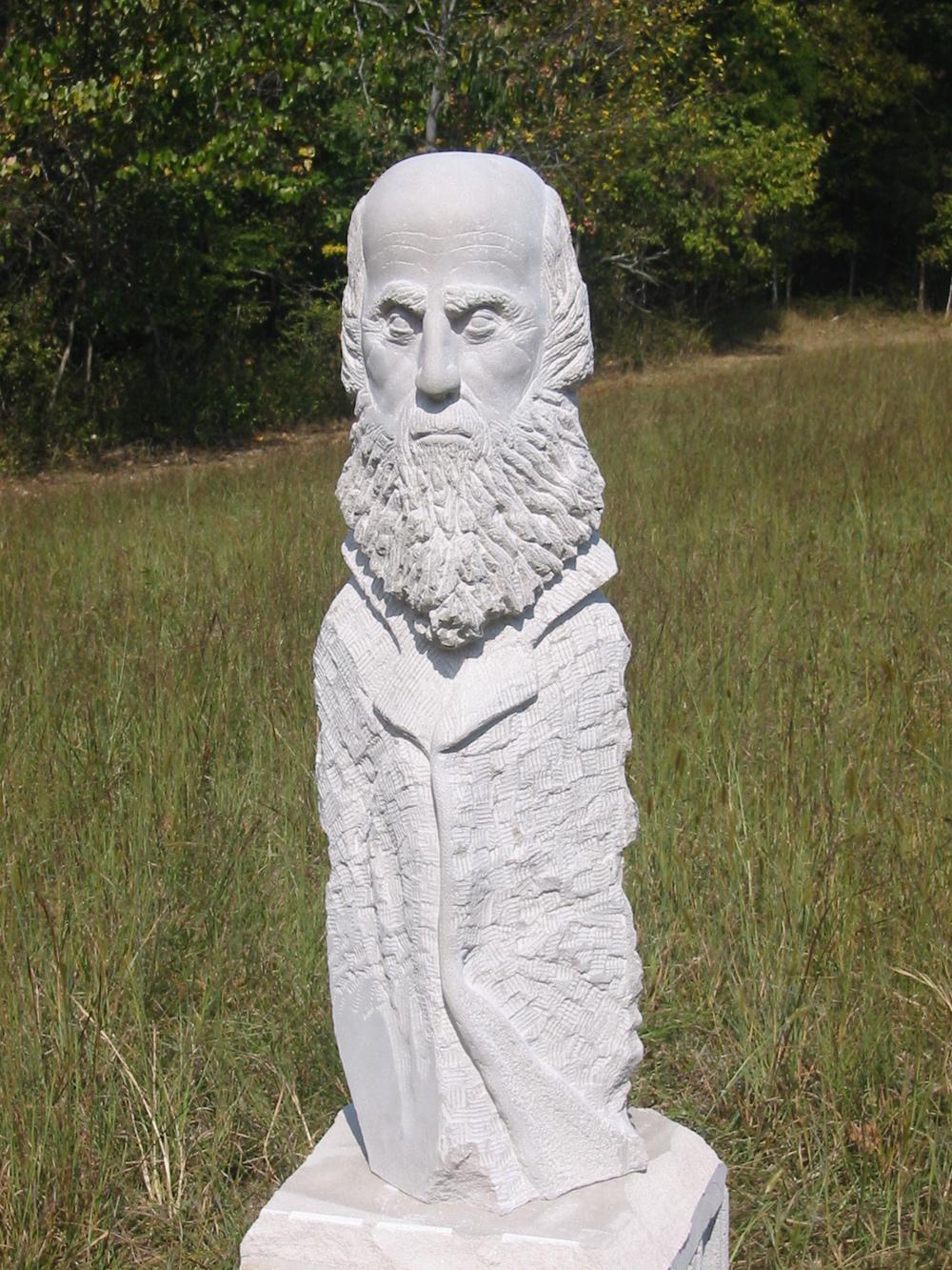 "DARWIN  ,  limestone, 48"""