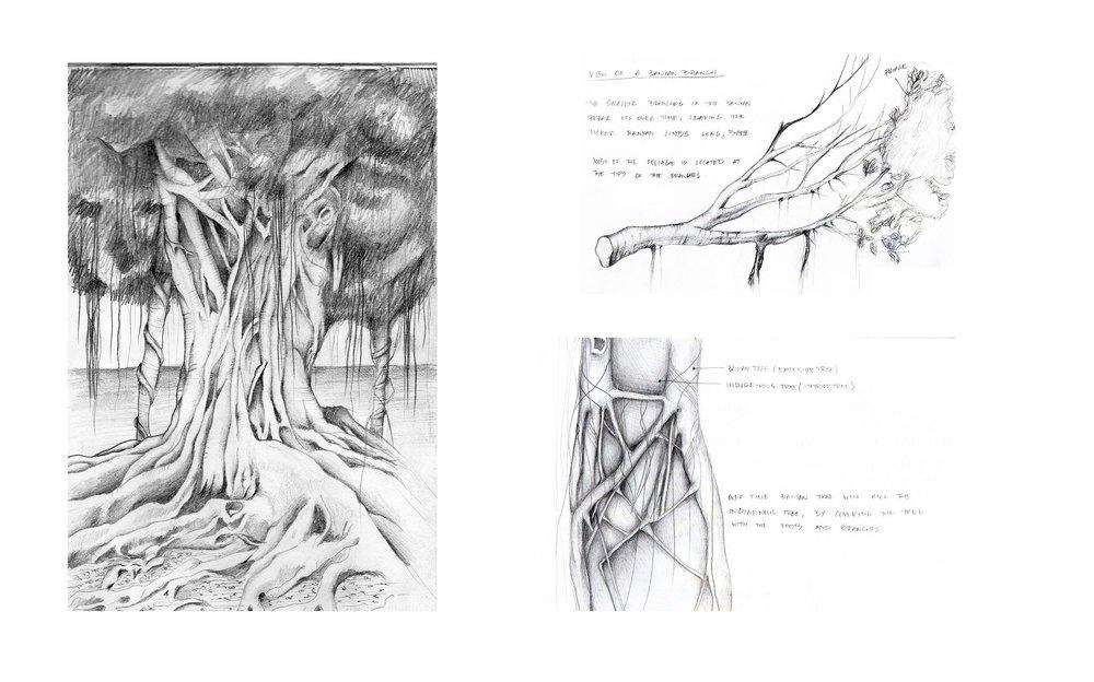 sanctuary-biological-architecture-tahiti-archillusion-desgin-3.jpg