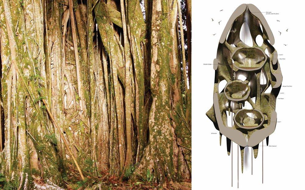 sanctuary-biological-architecture-tahiti-archillusion-desgin-5.jpg