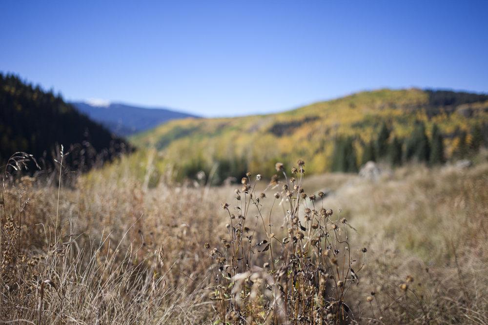 Colorado_093016-2.jpg