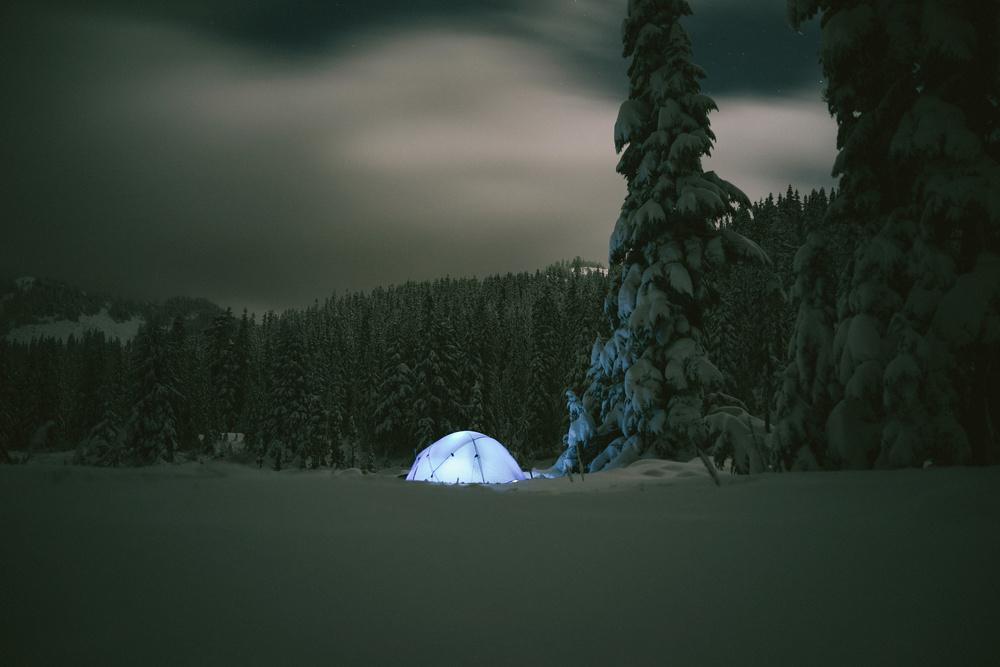 Shelter_16152728602_o.jpg