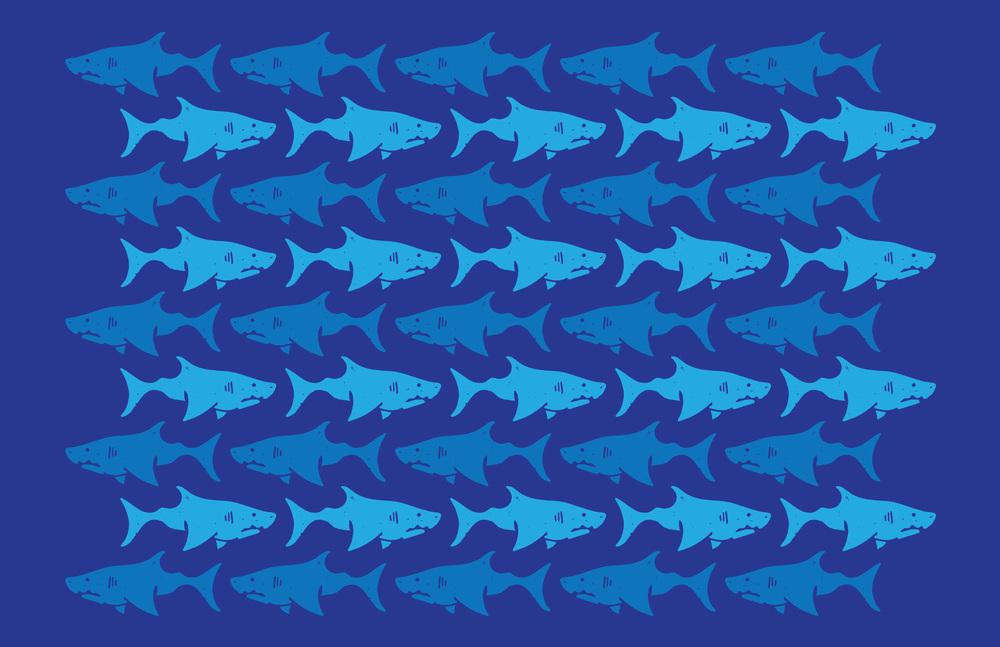 shark_pattern.jpg
