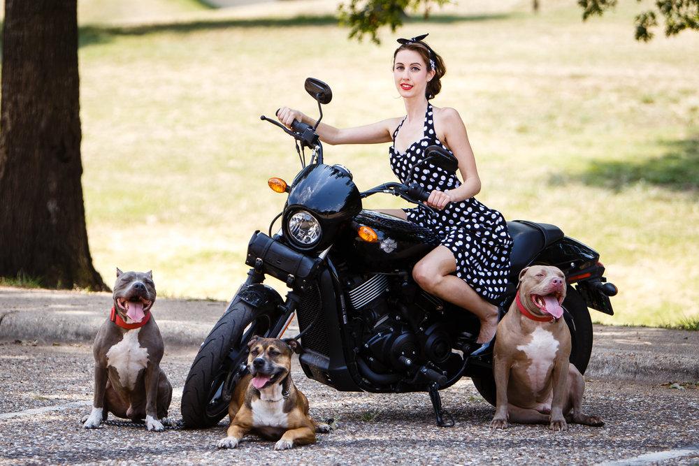 Shreveport Bossier Louisiana Dog & Pet Photographer