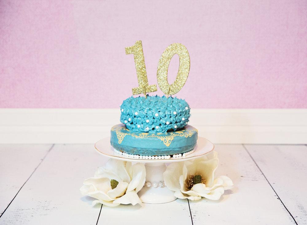 Basset Hound Cake Smash