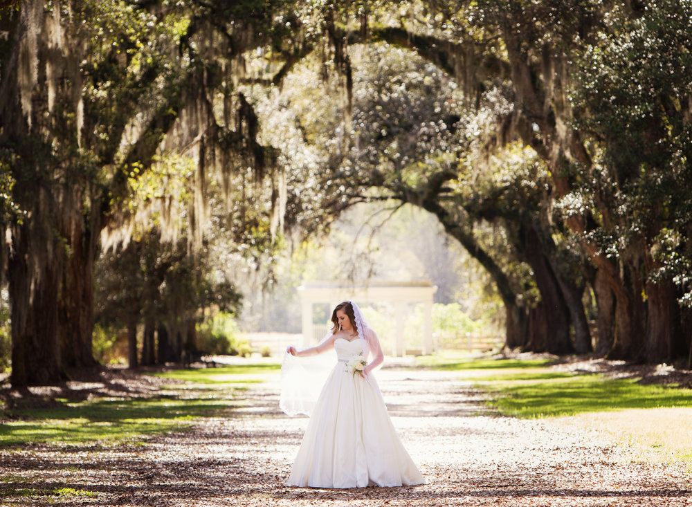 Rosedown Plantation Bridal Portraits in Louisiana