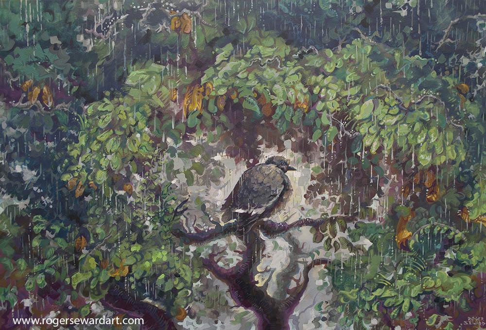 A dove rain 1 port size.jpg