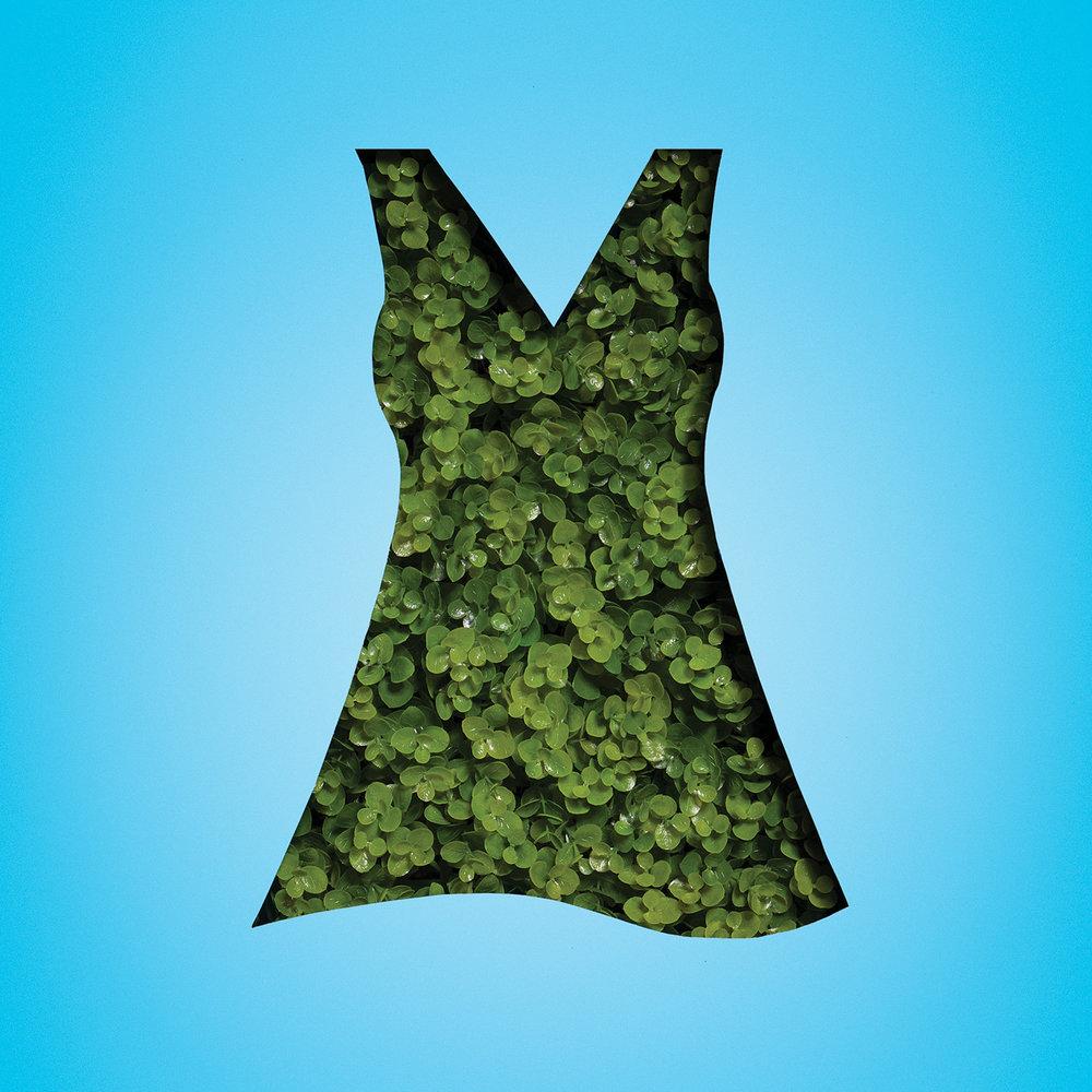 dress_plant.jpg