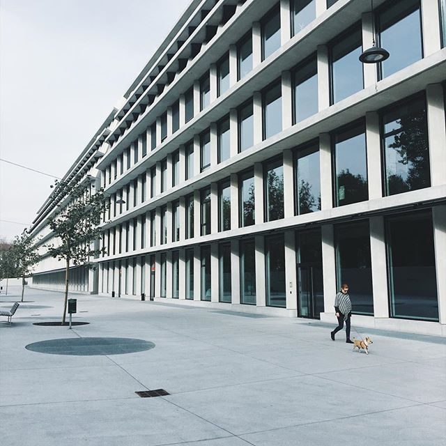 Facade of Fondazione Feltrinelli by @herzogdemeuron reflecting another perspective of city framed in constructional grids. . . . . . #architecture #architecturephotography #archilovers #design #architecturelovers #interiordesign #traditionalarchitecture #architectureporn #art #traditional #home #columns #architect #luxury #house #architects #archidaily #architecturaldetail #cityscape #archdaily #instaarchitecture #countryhouse #building #travel #exteriordesign #milan #milanogram