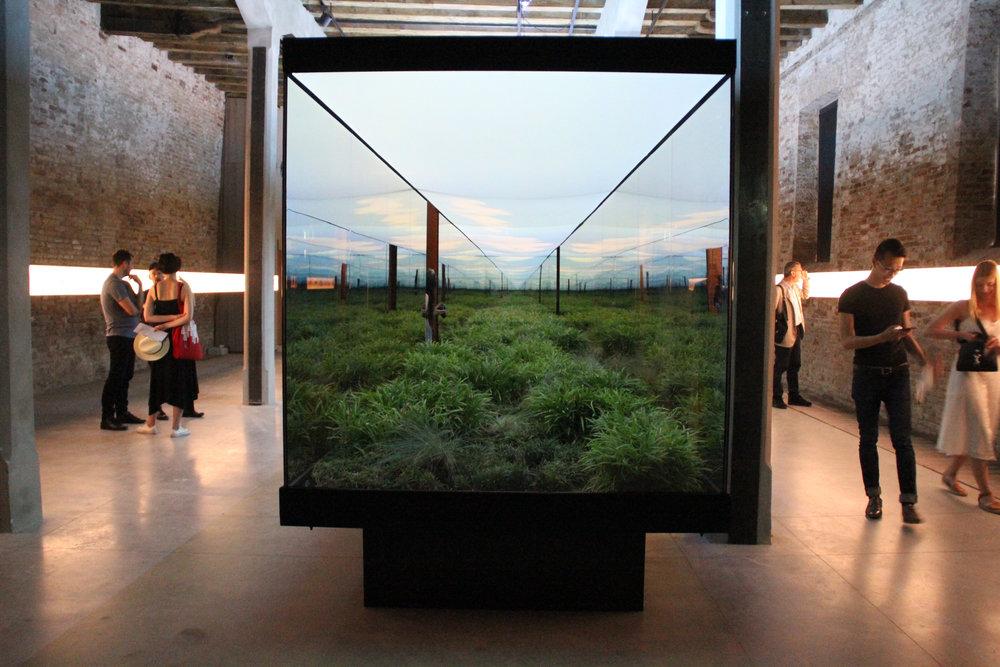 Vértigo Horizontal. Argentina Pavilion. Biennale of Architecture 2018. Image ©FUTURECRAFTER