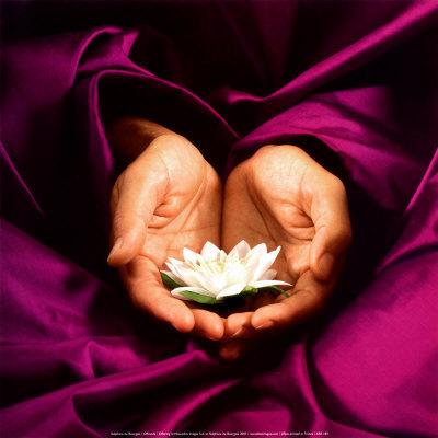 Namaste_lotus