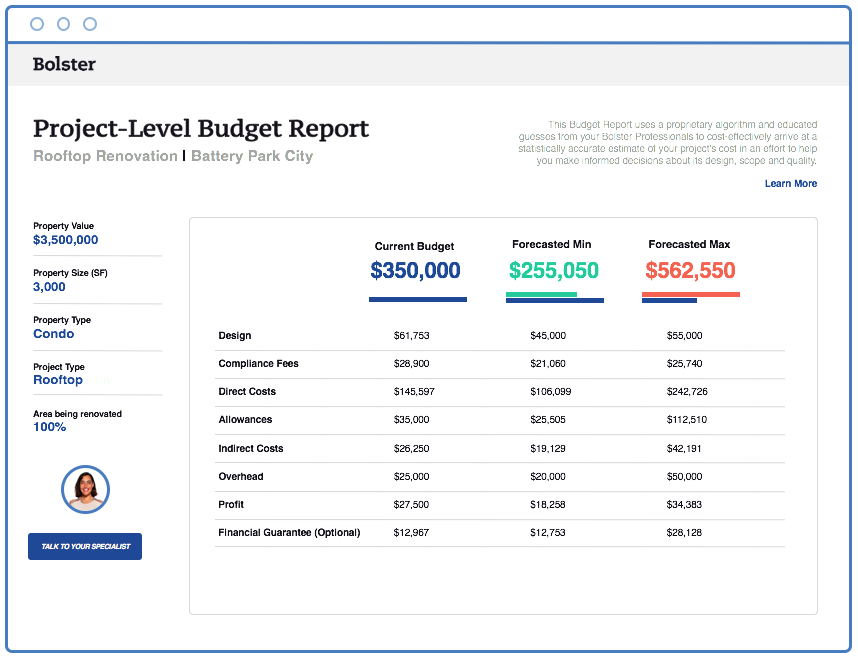 Bolster's Project-Level Budget Report.png