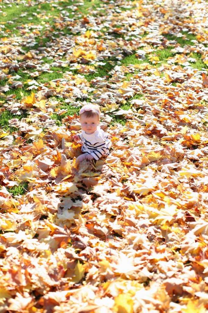 Seattle children family photographer fall leaves sun bedroom bed light sunlight rachael kruse photography children child baby six month 7