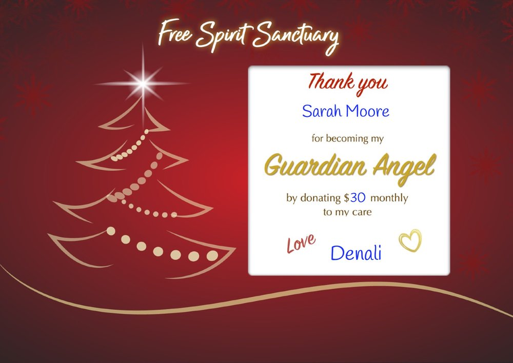 Sample Guardian Angel Sponsorship (for yourself)