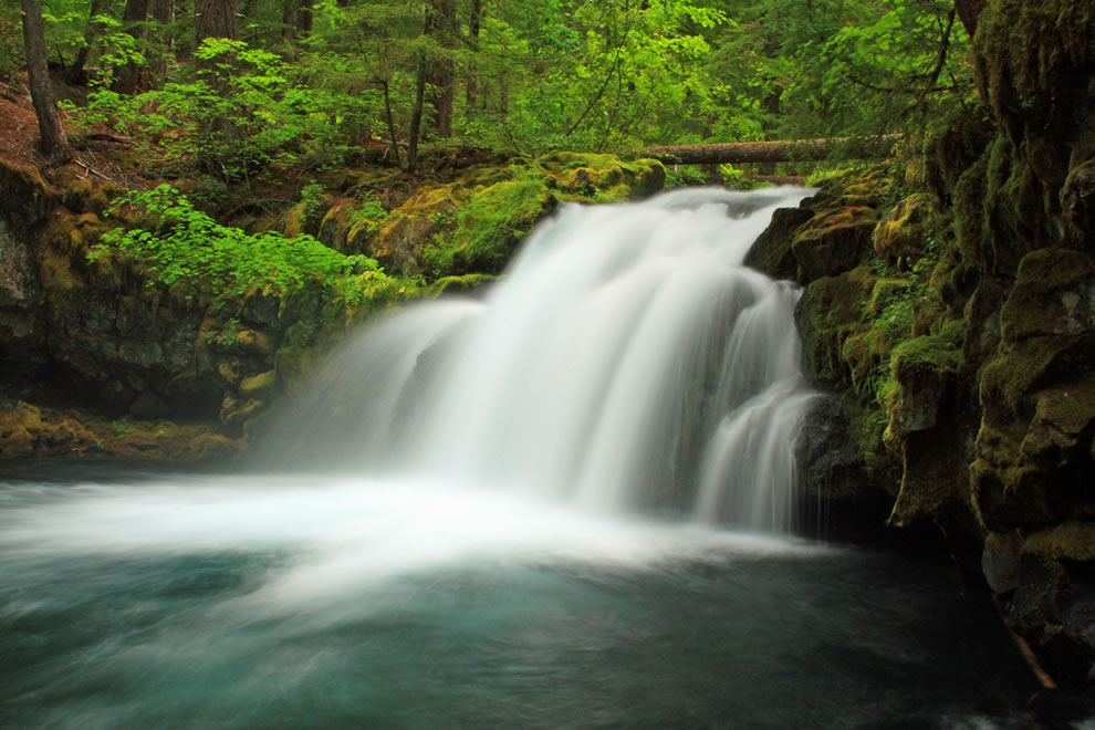 Thundering-waters-at-Whitehorse-Falls-Umpqua-National-Forest.jpg