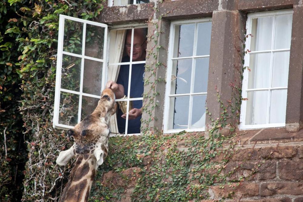 Giraffe Manor Exterior (42).jpg