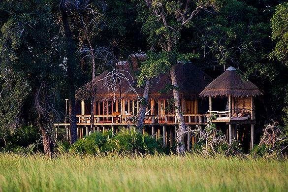 Jao Camp Botswana.jpg