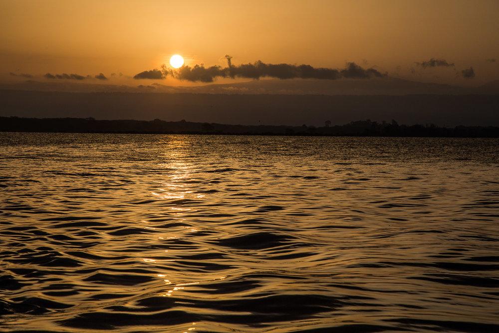 Safari Collection - copyright Scott Ramsay - @love_wild_africa-2186.jpg