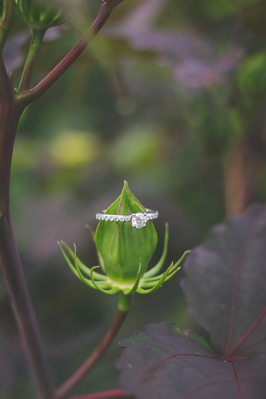 Engagement-54.jpg