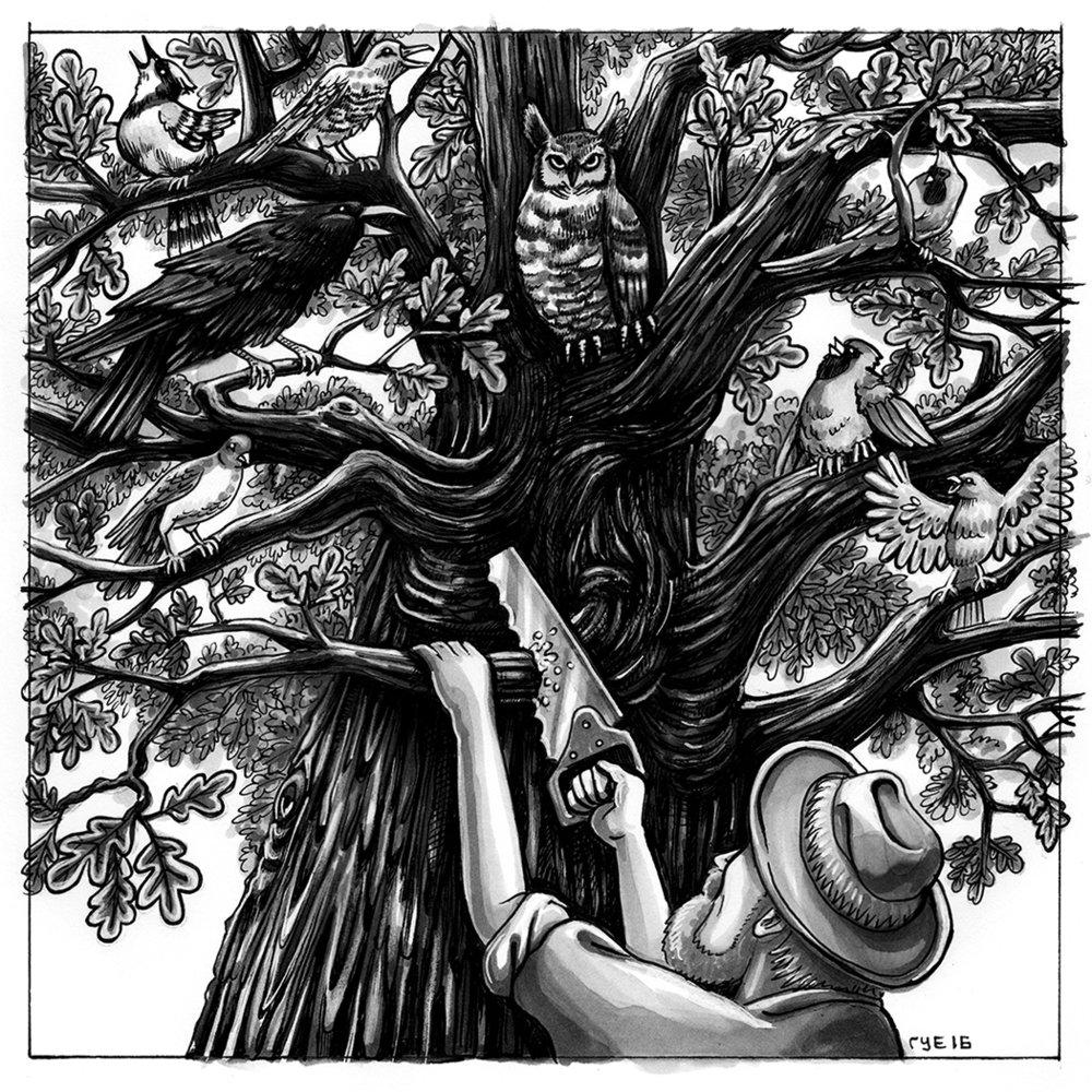 Birdies' Ball illustration