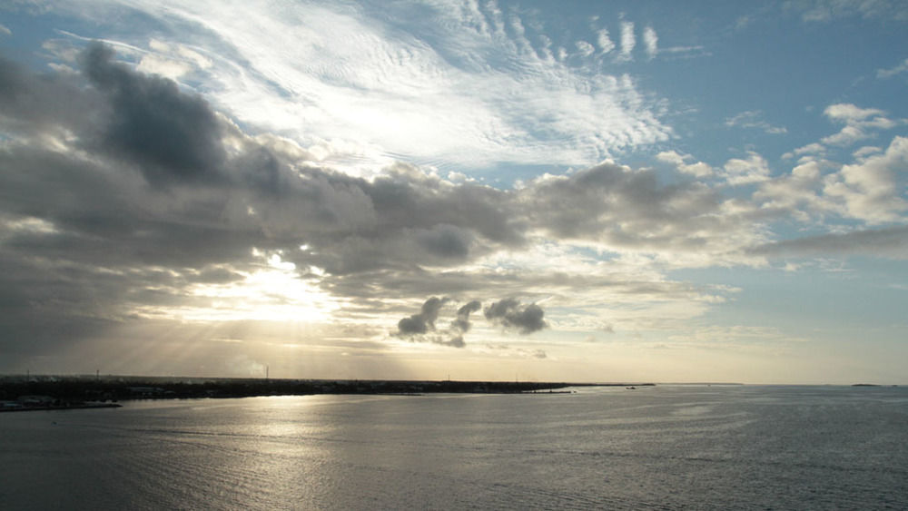 Tongan Sky