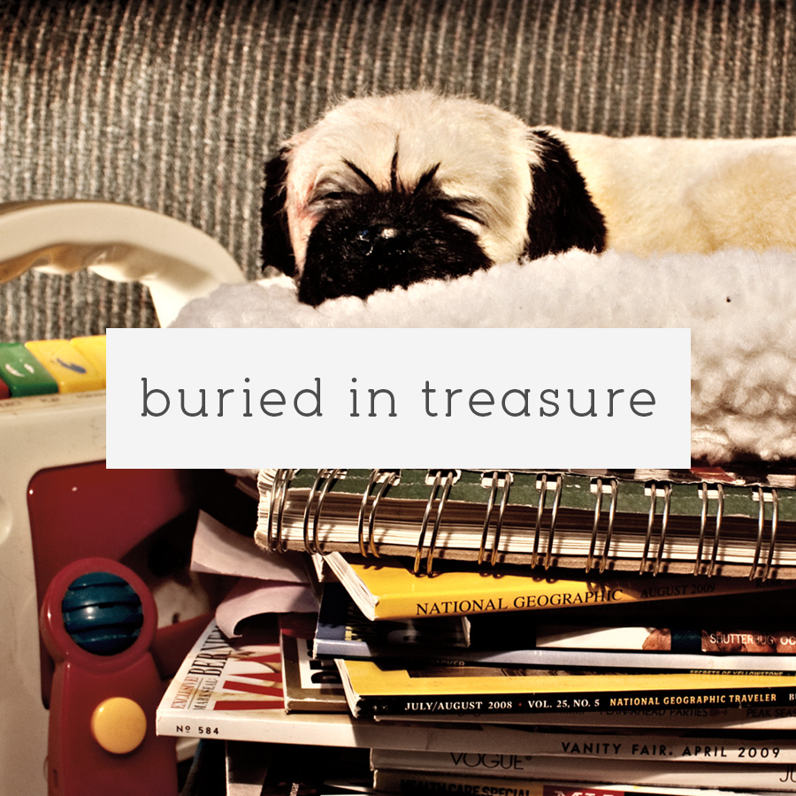 buried in treasure