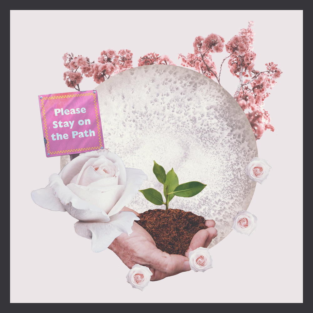 Large Rose Photo:  Siora Photography  Sign Photo:  @mduffel  Cherry Blossom Photo:  @eberhard_grossgasteiger  Hand with Plant Photo:  @byrawpixel  Small Roses Photo:  @anniespratt  Full Moon Art:  @sweet_b_design  Collage Art:  @sweet_b_design