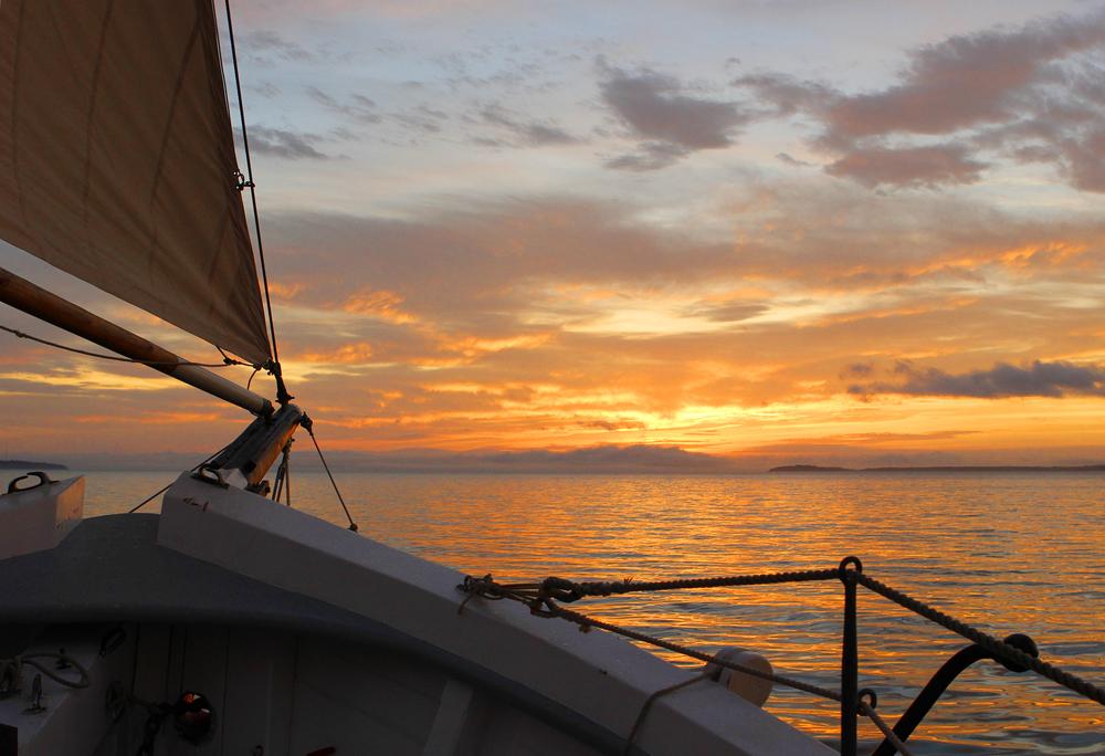 _schooner_9056sm.jpg