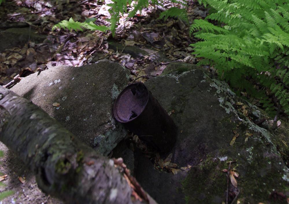 _woodstock-beercan_2451.jpg